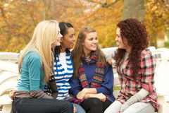 Group Of Four Teenage Girls Sitting And Chatting. On Bench In Autumn Park stock photography