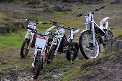 Group of four trial motorcycles Stock Image