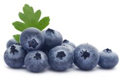 Group of fresh blueberries Stock Image