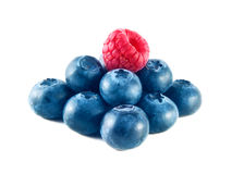 Group of fresh blueberries and raspberry isolated Royalty Free Stock Photo