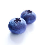 Group of Fresh Blueberries  on White Background Stock Images