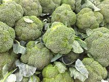 Group of fresh broccoli close up background Stock Photo