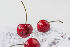 Group of fresh cherry in stuido shot Royalty Free Stock Photo