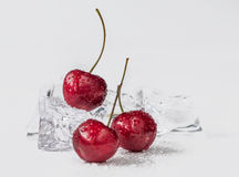 Group of fresh cherry in stuido shot Stock Photo