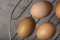 Group of fresh chicken eggs on a metallic grille Royalty Free Stock Image
