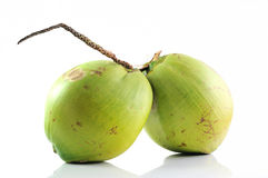 Group of fresh coconut fruits on white background Stock Images