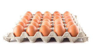 Group of fresh eggs on white Stock Photography