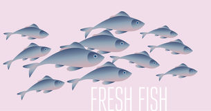 Group of fresh fish vector illustration for header,. Web, print, card and invitation. Plenty of herring or cod moving in the sea water Stock Photo