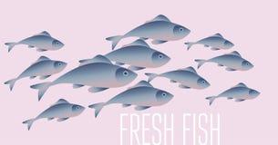 Group of fresh fish vector illustration for header, Stock Photo