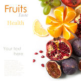Group of fresh fruits. Top view on group of fresh fruits over white with sample text royalty free stock photos