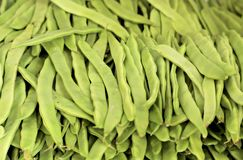 A group of fresh green bean pods are stacked in rows. A cropped shot, horizontal, close-up, top view. The concept of agriculture and proper nutrition royalty free stock photography