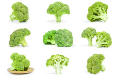 Group of fresh green broccoli close-up isolated on white background. Set of fresh raw broccoli on a white background cutout Royalty Free Stock Photo