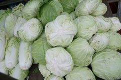 Group of fresh green cabbages Royalty Free Stock Photos