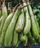 Group of fresh green Eggplants Royalty Free Stock Photography