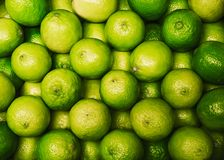 Group of fresh green lime citrus. Top view of fresh lemon lime at market royalty free stock photo
