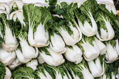 Group of fresh green vegetable (chinese cabbage),bok choy. Stock Photos
