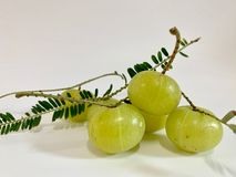 A group of fresh Indian gooseberry with leave isolated on white background, Phyllanthus emblica royalty free stock photos