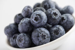 Group of fresh juicy blueberries Royalty Free Stock Photography