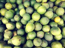 Group of fresh lime. stock images