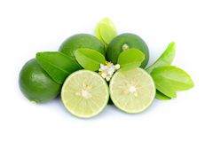 Fresh lime slice and green leaf isolated on white background Royalty Free Stock Images