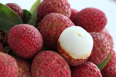 Group of fresh lychee Stock Photography