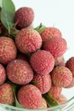 Group of fresh lychee Stock Images