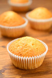 Group of fresh muffins Royalty Free Stock Photography