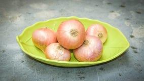 Group Of Fresh Onion royalty free stock photos