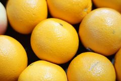 Group of fresh orange fruits. Details and looks fresh and yellow colors Stock Photography