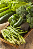 Group of Fresh Organic Assorted Green Vegetables. Group of Raw Fresh Organic Assorted Green Vegetables Stock Images