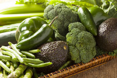 Group of Fresh Organic Assorted Green Vegetables. Group of Raw Fresh Organic Assorted Green Vegetables Royalty Free Stock Images