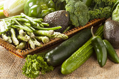 Group of Fresh Organic Assorted Green Vegetables. Group of Raw Fresh Organic Assorted Green Vegetables Royalty Free Stock Photos