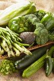 Group of Fresh Organic Assorted Green Vegetables. Group of Raw Fresh Organic Assorted Green Vegetables Stock Photos