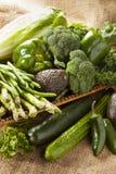 Group of Fresh Organic Assorted Green Vegetables. Group of Raw Fresh Organic Assorted Green Vegetables Stock Photo