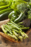Group of Fresh Organic Assorted Green Vegetables. Group of Raw Fresh Organic Assorted Green Vegetables Royalty Free Stock Photo