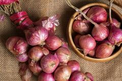Group of fresh organic shallots royalty free stock photos