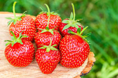 Group of fresh, organic strawberry on wooden board, outdoors. Selective focus Stock Photos