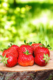 Group of fresh, organic strawberry on wooden board, outdoors. Selective focus Royalty Free Stock Photo
