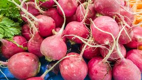 Group of fresh organic turnips on a counter in a typical Turkish greengrocery bazaar in Eskisehir, Turkey. Close up of fresh organic turnips on a counter in a Royalty Free Stock Images