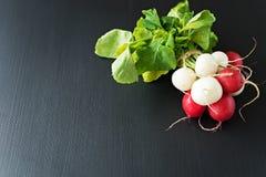 Group of fresh radishes on black background. Image of fresh group radishes Stock Image