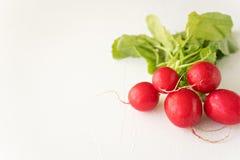 Group of fresh radishes on white background. Image of group of fresh radishes Royalty Free Stock Photo