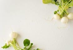 Group of fresh radishes on white background. Image of group of fresh radishes Stock Photos