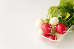 Group of fresh radishes on white background. Image of group of fresh radishes Stock Images