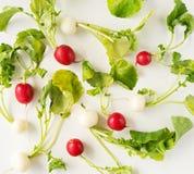 Group of fresh radishes on white background. Image of group of fresh radishes Stock Photography