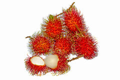 Group of fresh rambutan fruit on white background. Rambutan is a tropical fruit native to Southeast Asia Stock Image