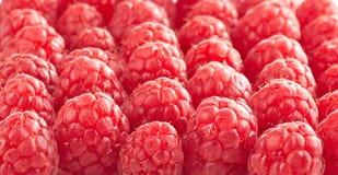 Group of fresh raspberries Stock Image