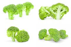 Set of fresh head of broccoli isolated on a white background with clipping path. Group of fresh raw broccoli on a white background Royalty Free Stock Image
