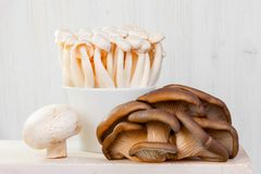 Group of fresh raw mushrooms on the white table. Group of fresh raw honey agarics, oyster mushrooms and champignon on the white table, light composition Royalty Free Stock Photo
