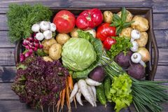 Group of fresh, raw vegetables on rustic wooden table tray. Selection includes carrot, potato, cucumber, tomato, cabbage, lettuce,. Beetroot, onion, garlic Royalty Free Stock Images