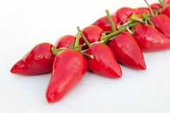 Group of fresh red hot chilli peppers on a white background Stock Image